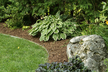 aluminum-garden-edging